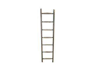 Vintage Ladder for Hire