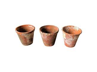 Ceramic Pots for Hire Scotland