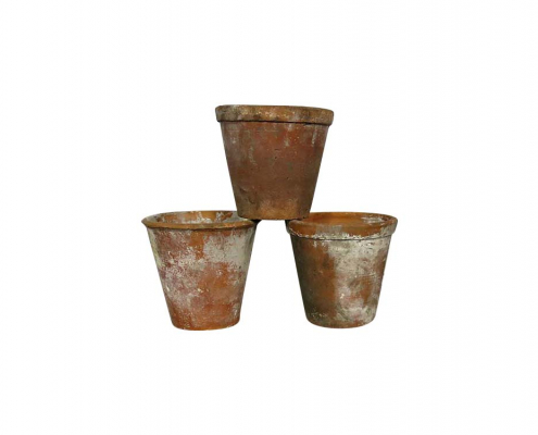 Rustic Terracotta Plant Pots for Hire Scotland