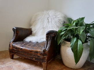 Large Gotland Sheepskin White